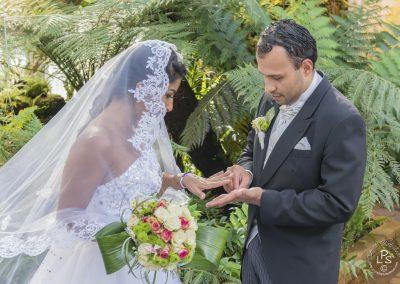 Wedding_7713